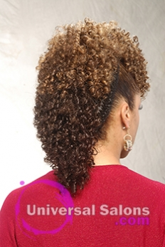 Back View Curly Mohawk Hairstyle with Twists from Shae Thompson