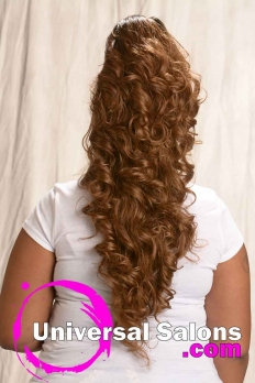 Long Ponytail Hairstyle from Amber McClain (6)