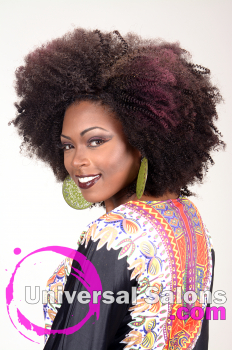 Natural Afro-Centri Black Hairstyle from Tanisha Holland (2)