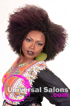 Natural Afro-Centri Black Hairstyle from Tanisha Holland (4)