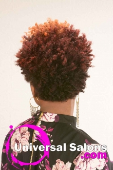 Natural Hairstyle with Curls and Hair Color from D Hair Weaver (3)
