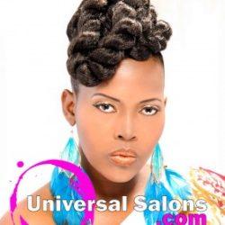 Jumbo Twist Hawk Hairstyle from Latoya Brown