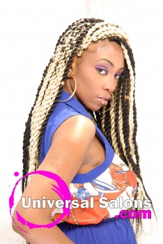 """Natural Braids and Twist Hairstyle from """"Chi Chi"""" Sims"""