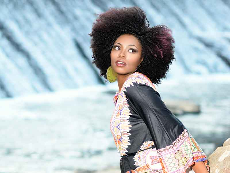 Natural Afro Black Hairstyle from Tanisha Holland