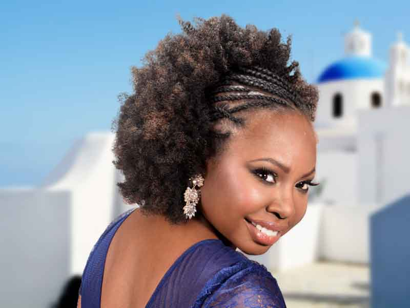 Beautiful Afro Hairstyle with Twists