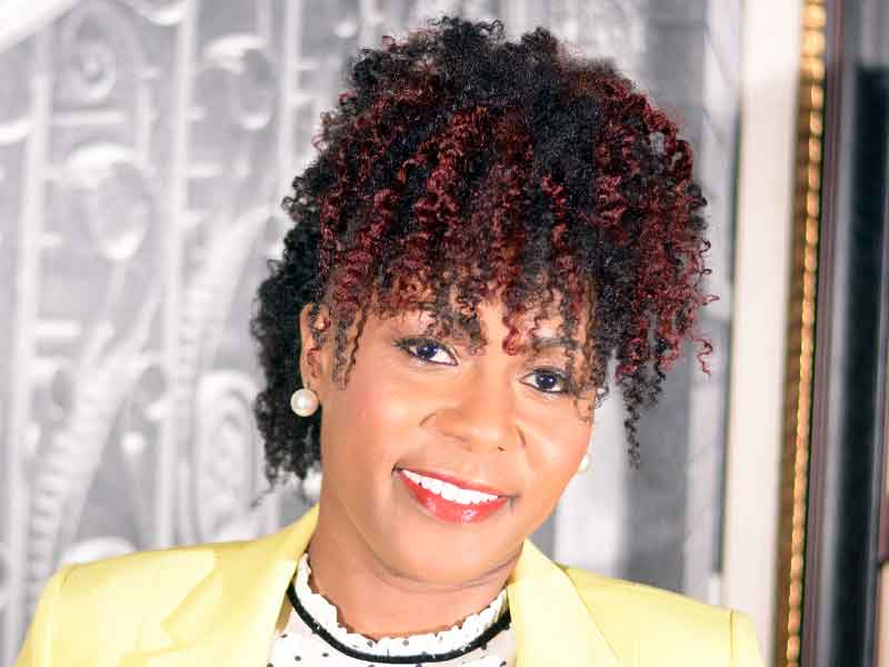 Curly Frohawk Hairstyle with Auburn Highlights