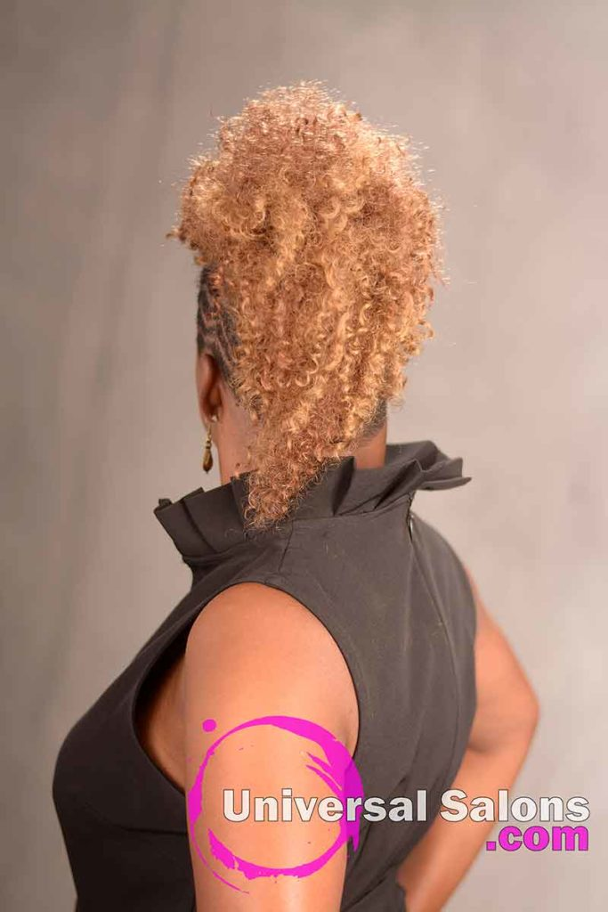 Back View of a Curly Mohawk Hairstyle
