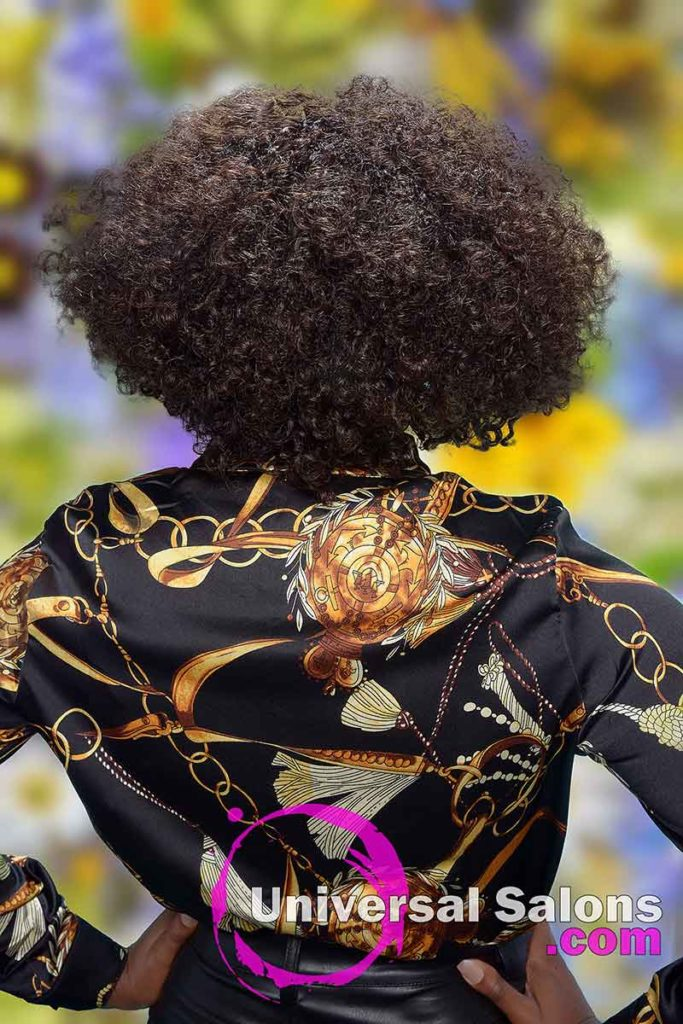 Back View of Curly Hairstyle on Black Model