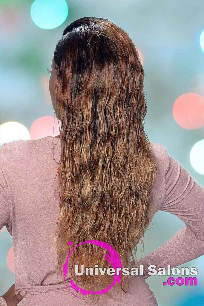 Back View of Long Lace Front Wig Hairstyle