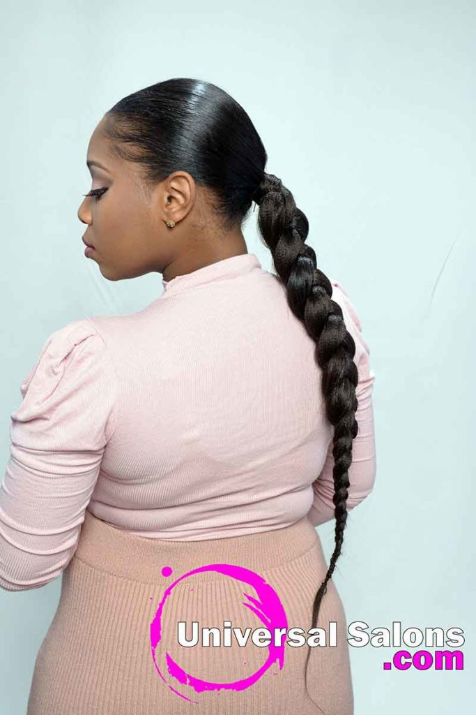 Left Side View of a Long Sleek Ponytail