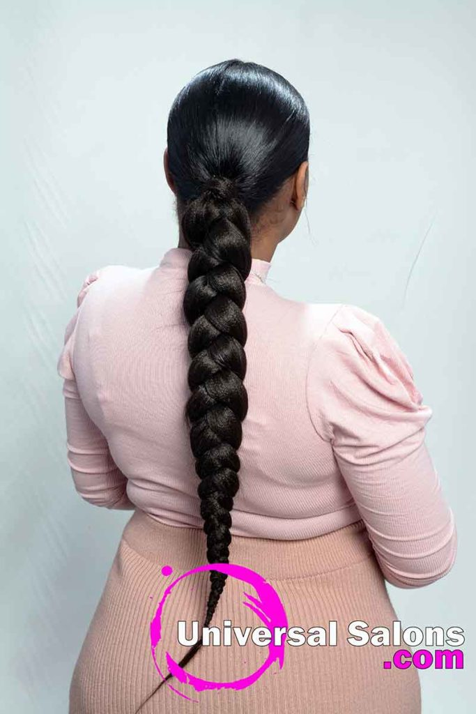 Back View of a Long Sleek Ponytail